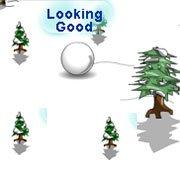 Avalanche snow ball