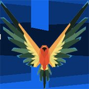 Maverick Bird