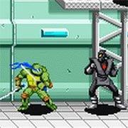 Teenage Mutant Ninja Turtles (GBA)