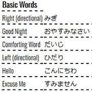 Learning Japanese Words