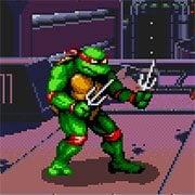 Ninja Turtles with Rage