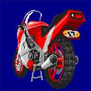 Rally Bike (Arcade)